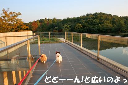 morikoro081018-4.jpg