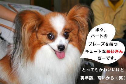 mugicchi080816-1.jpg
