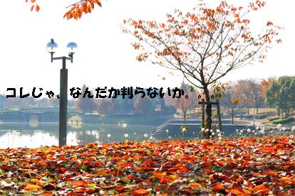 ochiai071203-2.jpg