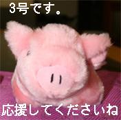 oink4.jpg