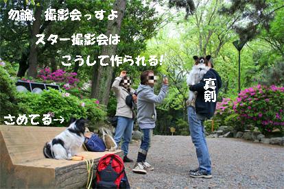 oogaki080503-1.jpg