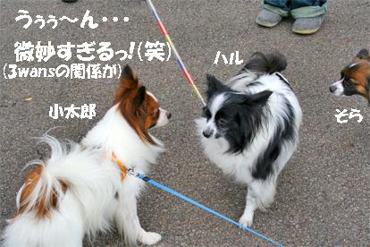 otokogumi071022-1.jpg