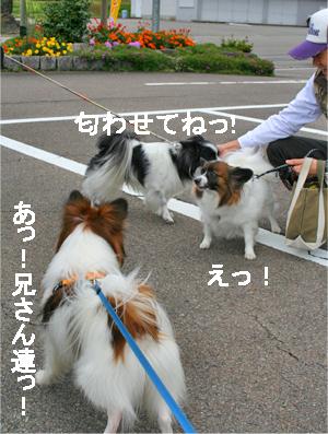 otokogumi071022-4.jpg