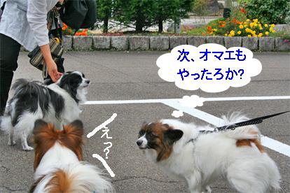 otokogumi071022-6.jpg