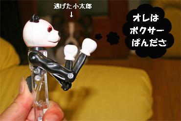 panda071003-1.jpg