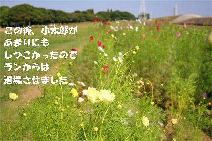 run081011-1.jpg