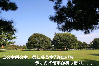 run081011-3.jpg