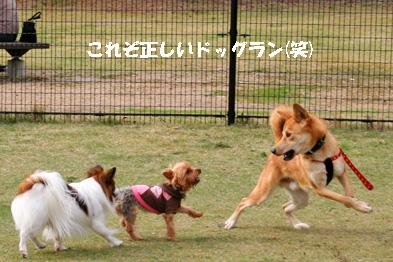 run081103-1.jpg