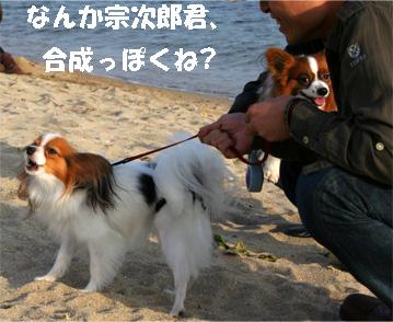 seisouchan081102-1.jpg