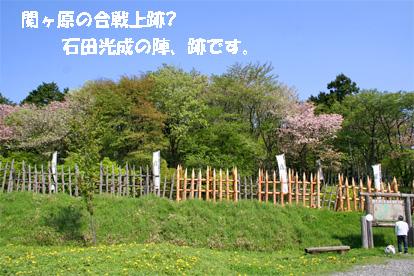 sekigahara080428-1.jpg