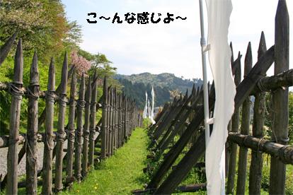 sekigahara080429-1.jpg