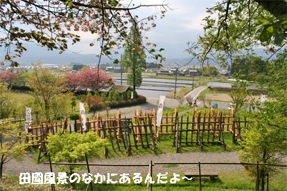 sekigahara080429-2.jpg