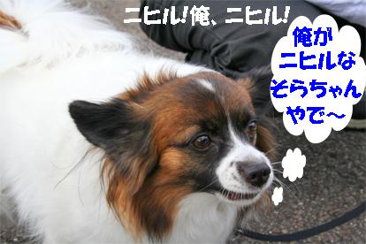sorachan071022-1.jpg