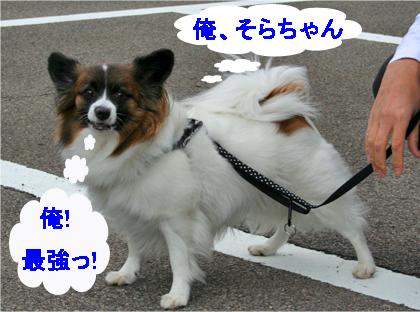 sorachan071022-2.jpg