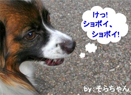 sorachan071022-3.jpg
