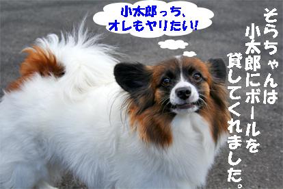 sorachan071024-1.jpg