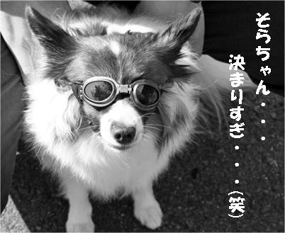 sorachan071024-5.jpg
