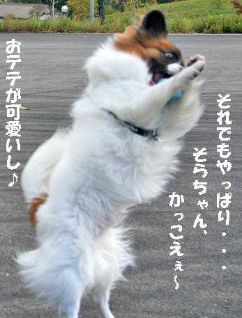 sorachan071024-7.jpg