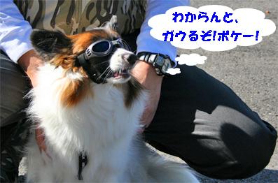 sorachan071026-2.jpg