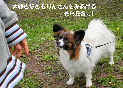 sorachan080501-1.jpg