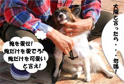 sorachan081101-1.jpg