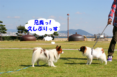 sorachan081101-2.jpg