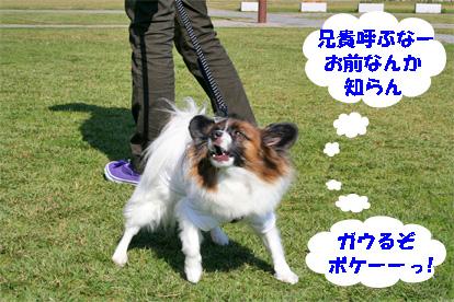 sorachann081101-3.jpg