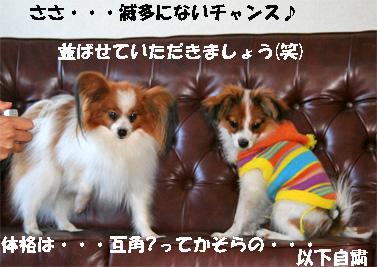 soramu-080110-1.jpg
