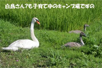 takarada080819-3.jpg
