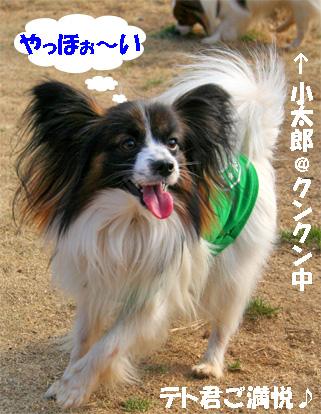 tetokun080311-1.jpg