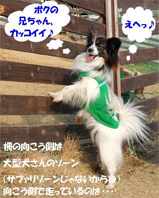tetokun080313-2.jpg