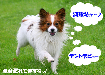 touyako080819-2.jpg