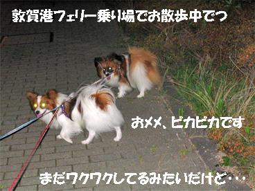 tsuruga080818-2.jpg
