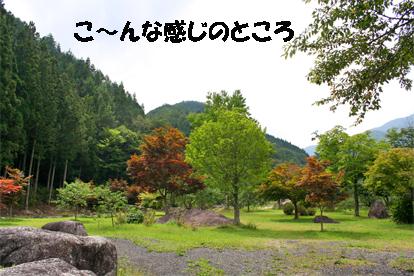 ufufu070910-1.jpg