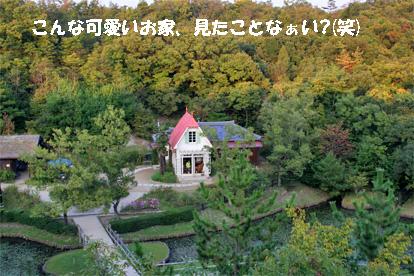 ufufu081018-1.jpg