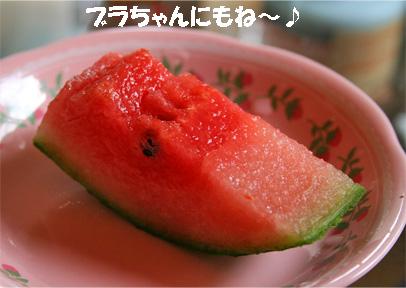 umauma3.jpg