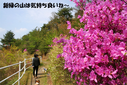 yama080415-1.jpg