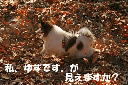yuukota061225-1.jpg