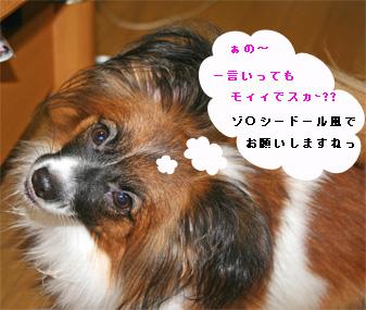 yuzu060920-3.jpg