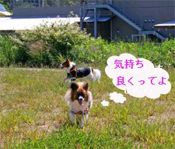 yuzu060924-1.jpg