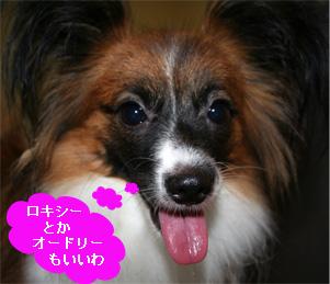 yuzu060926-7.jpg