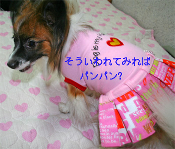 yuzu061002-10.jpg