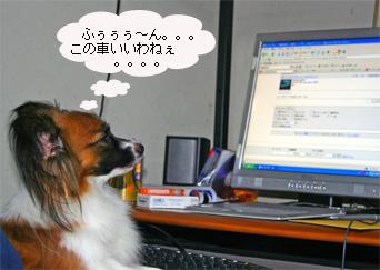 yuzu061002-6.jpg