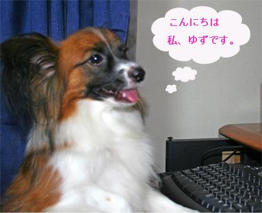 yuzu061002-7.jpg
