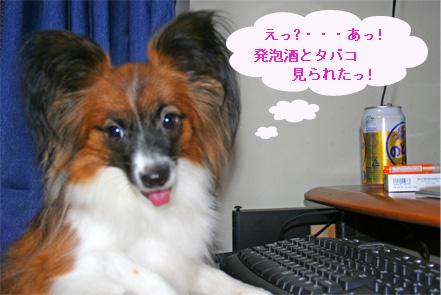 yuzu061002-8.jpg