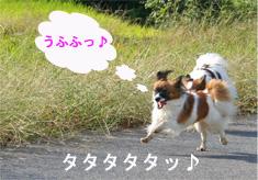 yuzu061003-1.jpg