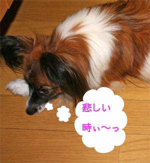 yuzu061004-3.jpg