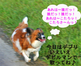 yuzu061007-4.jpg