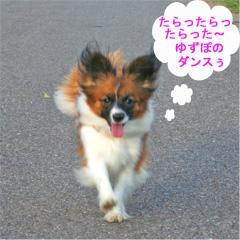 yuzu061007-6.jpg