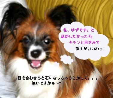 yuzu061012-3.jpg